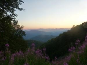 Priroda oko manastira Ćirilovac